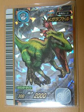 恐竜2007-1_01
