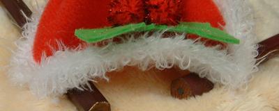 カピバラさん_クリスマス02