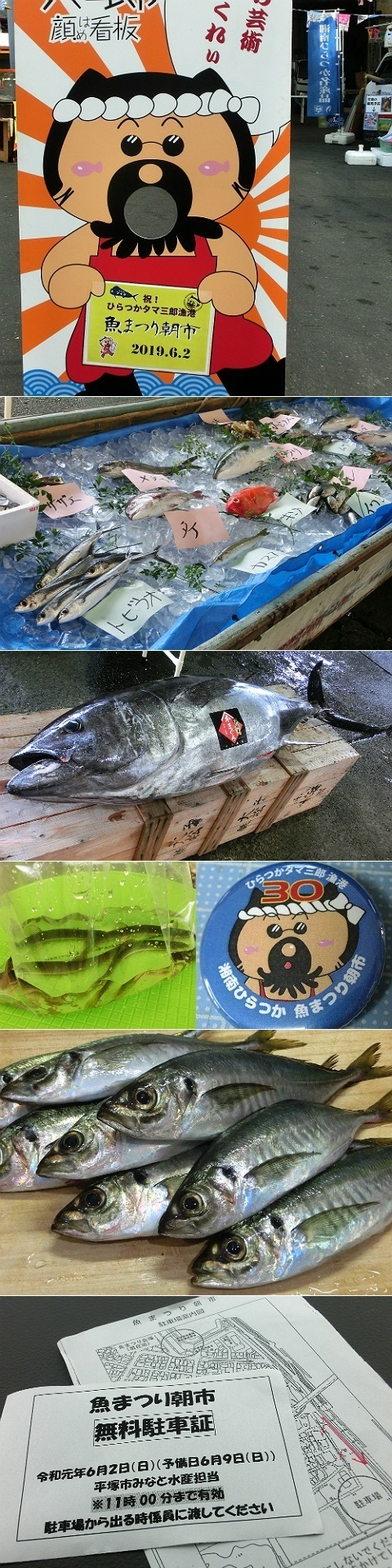 第30回湘南ひらつか魚まつり朝市