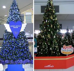 クリスマスツリー_福岡名古屋