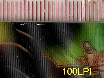 DBZウェファーチョコ_100LPI