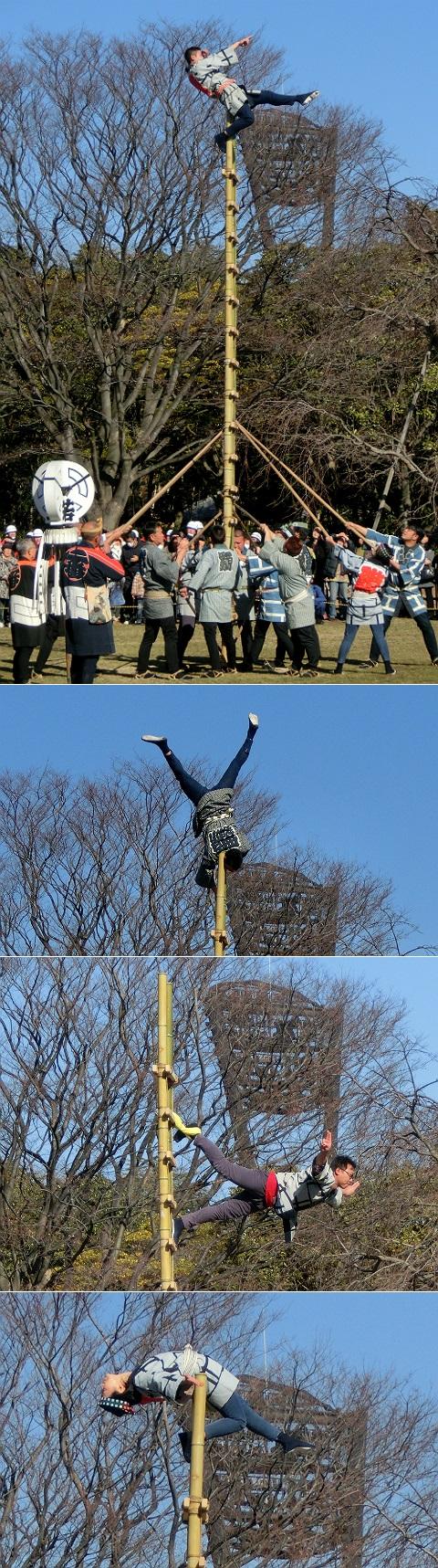 平成27年平塚市消防出初式 梯子乗り