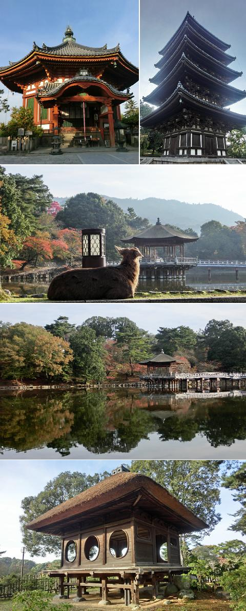 奈良公園周辺 興福寺〜浮見堂