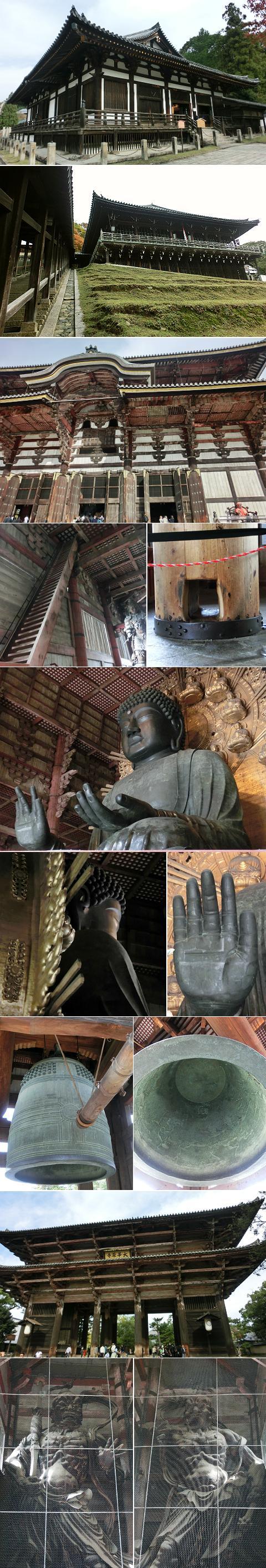 奈良公園周辺 東大寺