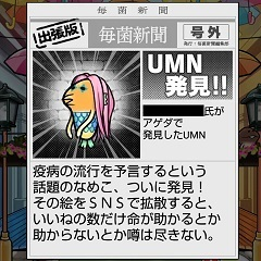 nameko_UMN-25.jpg